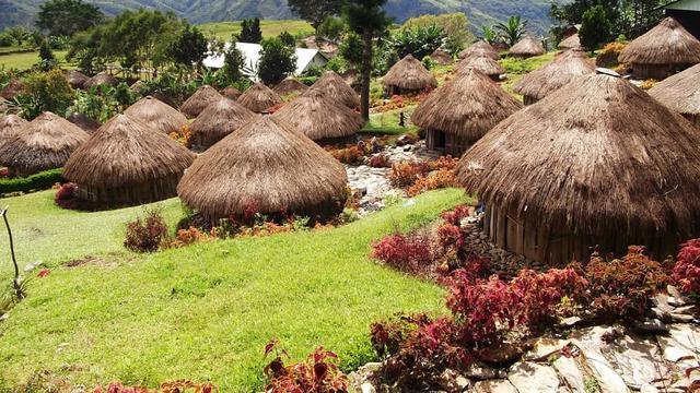 Struktur Rumah Adat Papua dan Penjelasannya